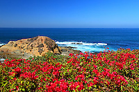 Scenic View of Laguna Beach Coast