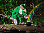 Leprechaun and a pot of gold with rainbow coming out of it in a forest