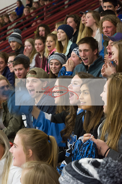 Eagle River fans cheer at the McDonald Center Saturday, January 28, 2017.  Photo for the Star by  Michael Dinneen