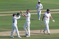 Rikki Clarke of Warwickshire is congratulated by his team mates after taking the wicket of Nick Browne during Essex CCC vs Warwickshire CCC, Specsavers County Championship Division 1 Cricket at The Cloudfm County Ground on 19th June 2017
