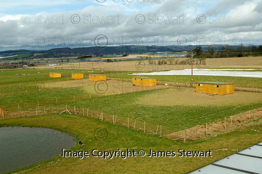 07/04/2006         Copyright Pic: James Stewart.File Name : sct_jspa04_bird_flu.JONATHAN DARK'S COMPOUND WHERE HE  HAS HAD TO MOVE HIS FLOCK OF HENS INDOORS.....Payments to :.James Stewart Photo Agency 19 Carronlea Drive, Falkirk. FK2 8DN      Vat Reg No. 607 6932 25.Office     : +44 (0)1324 570906     .Mobile   : +44 (0)7721 416997.Fax         : +44 (0)1324 570906.E-mail  :  jim@jspa.co.uk.If you require further information then contact Jim Stewart on any of the numbers above.........