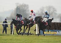 Horse Racing 2013-12