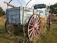 A pioneer wagon at the Columbia Gorge Discovery Center in The Dalles Oregon