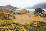 A ship rests in a fjord in the yellow East Greenland landscape.