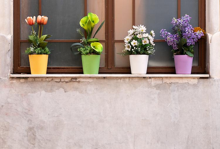 Potted Flowers 01 - Beyoglu, Istanbul, Turkey.