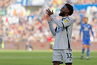 Nathan Dyer of Swansea City shows his disappointment during the Sky Bet Championship match between Swansea City and Cardiff City at the Liberty Stadium, Swansea, Wales, UK. Sunday 27 October 2019