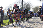 Riders summit the Taaienberg 18% cobbled climb during the 60th edition of the Record Bank E3 Harelbeke 2017, Flanders, Belgium. 24th March 2017.<br /> Picture: Eoin Clarke | Cyclefile<br /> <br /> <br /> All photos usage must carry mandatory copyright credit (&copy; Cyclefile | Eoin Clarke)