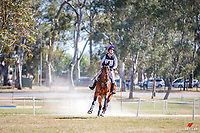 AUS-Molly Barry rides Shina Kuma during the Cross Country for the Bates Australian Young Rider Championships CCI2*YR. 2018 AUS-Mitsubishi Motors Australian International 3 Day Event. Saturday 17 November. Copyright Photo: Libby Law Photography