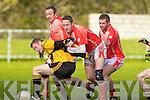 l-r: Brian O'Hanlon(Asdee), Jonathon O'Dwyer(Brosna) Seamus McAuliffe(Brosna), Michael O'Connor(Brosna)