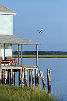 Bayside retreat cottage.