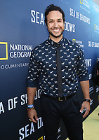 HOLLYWOOD, CALIFORNIA - JULY 10: Jaylen Moore attends the National Geographic Documentary Films' premiere of 'Sea Of Shadows' at NeueHouse Los Angeles on July 10, 2019 in Hollywood, California. (Photo by Frank Micelotta/National Geographic/PictureGroup)