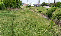 Drainage ditch between Howard Watson Trail, located just south of London Road.