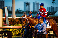 HALLANDALE BEACH, FL - JANUARY 27: Florent Geroux celebrates at the Pegasus World Cup Invitational at Gulfstream Park Race Track on January 27, 2018 in Hallandale Beach, Florida. (Photo by Alex Evers/Eclipse Sportswire/Getty Images)