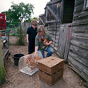 Re- Home Series. Kent, UK. 2009. A mother and son rescue hens from Diana.