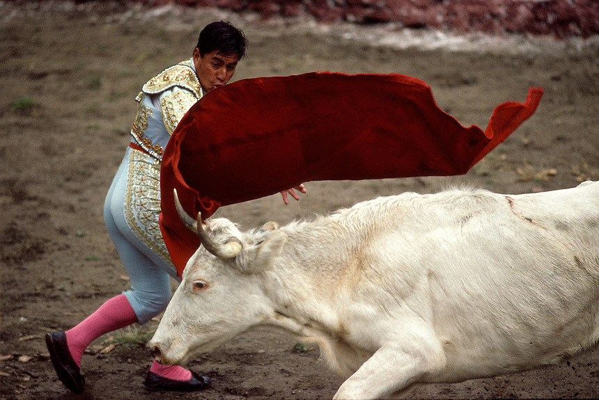 A young amateur matador waves his cape in a flourish over the head of a neighbor's bull in Ollantaytambo. Many of the animals brought to the Pentecost Sunday bullfight were too domesticated to offer a challenge.