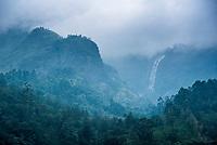 Kerala, Munnar, India