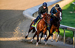 LOUISVILLE, KENTUCKY - APRIL 27: Plus Que Parfait, trained by Brendan Walsh, exercises in preparation for the Kentucky Derby at Churchill Downs in Louisville, Kentucky on April 27, 2019. John Voorhees/Eclipse Sportswire/CSM