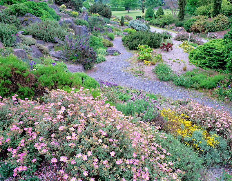 European Garden. University of Britsh Columbia Botanical Garden. Vancouver, BC