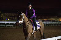 11-01-17 Breeders Cup Workouts