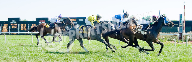 Rockaby Bay winning at Delaware Park on 9/12/12