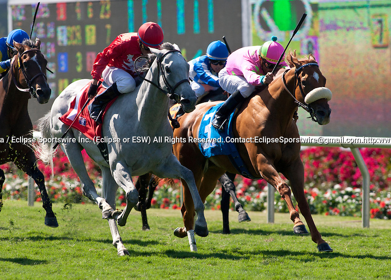 Andina(IRE) and Garrett Gomez(rail) defeat Wild Mia and David Flores to win the Osunitas Stakes at Del Mar Thoroughbred Club in Del Mar, CA.  July 20, 2011