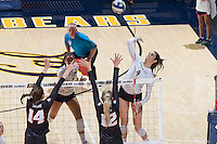 BERKELEY, CA - November 23, 2016: Cal falls to Oregon State 25-27, 25-14, 25-19, 23-25, 15-10 on Senior Day at Haas Pavilion.