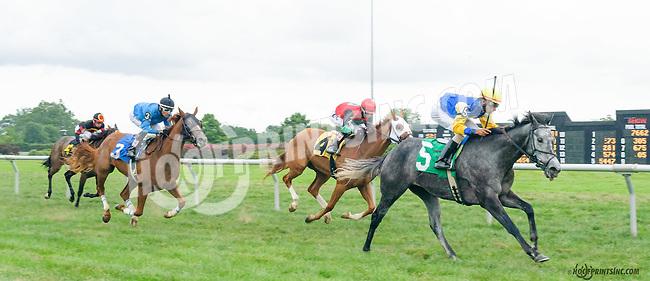 Saint Abbey winning at Delaware Park on 8/9/15