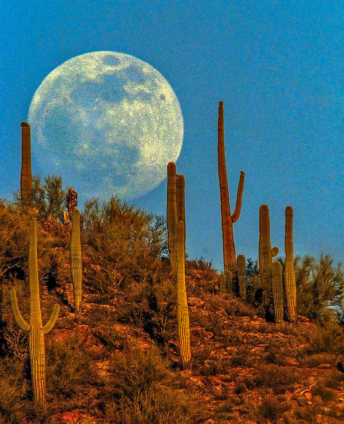 06/02/2004. 6A; The moon tops a hill in the Tucson Mountains at about 7 p.m. yesterday, as seen from West Ajo Way just west of Mission Road. This month's full moon, which is tonight, falls on the day when the moon is closer to Earth than any other day of the year, according to the University of Arizona Flandrau Science Center. Call Flandrau's news line at 621-4310 for more information.