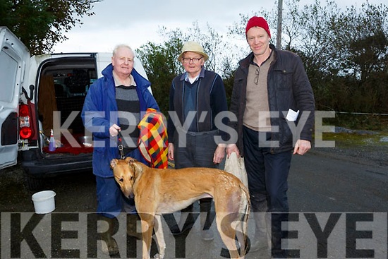 At the Abbeydorney Coursing on Monday were Michael O'Neill, John Moynihan and Brendan Moynihan with Awesome-Sauce