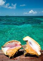 AT-Abaco Bahamas