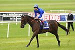 Horse Racing - The Curragh Racecourse - The Darley Irish Oaks. .Hibaayeb - Irish Oaks