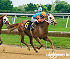 Thunder Duke winning at Delaware Park on 6/2/16