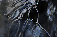 """BLACK BEAUTY""<br />