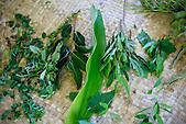 Plantes médicinales kanak, Nouvelle-Calédonie