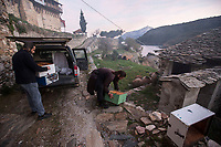 Mount Athos - The Holy Mountain.<br /> Monks empty beehives from a car in the early morning.