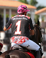 WELLINGTON, FL - MARCH 12:  Polito Pieres of Orchard Hill. Scenes from the early rounds of the 26 goal USPA Gold Cup at the International Polo Club, Palm Beach on March 12, 2017 in Wellington, Florida. (Photo by Liz Lamont/Eclipse Sportswire/Getty Images)