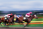 Horse race with motion as the riders and horses go by