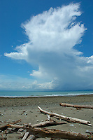 drift wood on beach with clouds buidling behind, Golfo Dulce Costa Rica, Pacific Ocean