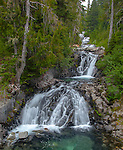 Mount Rainier National Park,  WA  <br /> Multiple falls on the Paradise River flowing thru the alpine forest