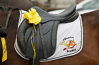 Pictured: Blow For Bradley livery on one of the horses outside St John Lloyd School, in Llanelli, Carmarthenshire, UK. Thursday 12 September 2019<br /> Re: The family of a bullied pupil were joined by friends and held a minute's silence, a year after he hanged himself in school toilets.<br /> His heartbroken father Byron John claims his son Bradley, 14, would still be alive if the school had acted to stop the bullies.<br /> Bradley's 13-year-old sister Danielle found him dead in the toilet block at, an hour after going missing at St John Lloyd Roman Catholic School in Llanelli, South Wales, UK.