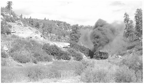 RGS #42 working uphill with the scrapper's freight between Porter and Pine Ridge.<br /> RGS  between Porter and Pine Ridge, CO  Taken by Richardson, Robert W. - 9/11/1952
