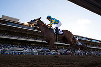 DEL MAR, CA - NOVEMBER 04: Solomini #2, ridden by Flavien Prat, runs the home stretch on Day 2 of the 2017 Breeders' Cup World Championships at Del Mar Thoroughbred Club on November 4, 2017 in Del Mar, California. (Photo by Alex Evers/Eclipse Sportswire/Breeders Cup)
