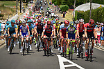 The peloton in action during Stage 7 of the 2018 Tour de France running 231km from Fougeres to Chartres, France. 13th July 2018. <br /> Picture: ASO/Pauline Ballet | Cyclefile<br /> All photos usage must carry mandatory copyright credit (&copy; Cyclefile | ASO/Pauline Ballet)