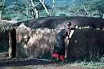 A Maasai woman covers her hut with cow dung.<br /> This has the effect of waterproofing the roof.<br /> A moran manyatta, Kajiado, Kenya.