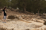 Israel, Southern Hebron Mountain, anciect wine press in Yatir forest