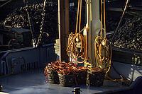 Europe/Pays-Bas/Hollande/Yerseke : Le port myticole de Yerseke - Dragueurs sur les quais du port - Détail paniers de moules