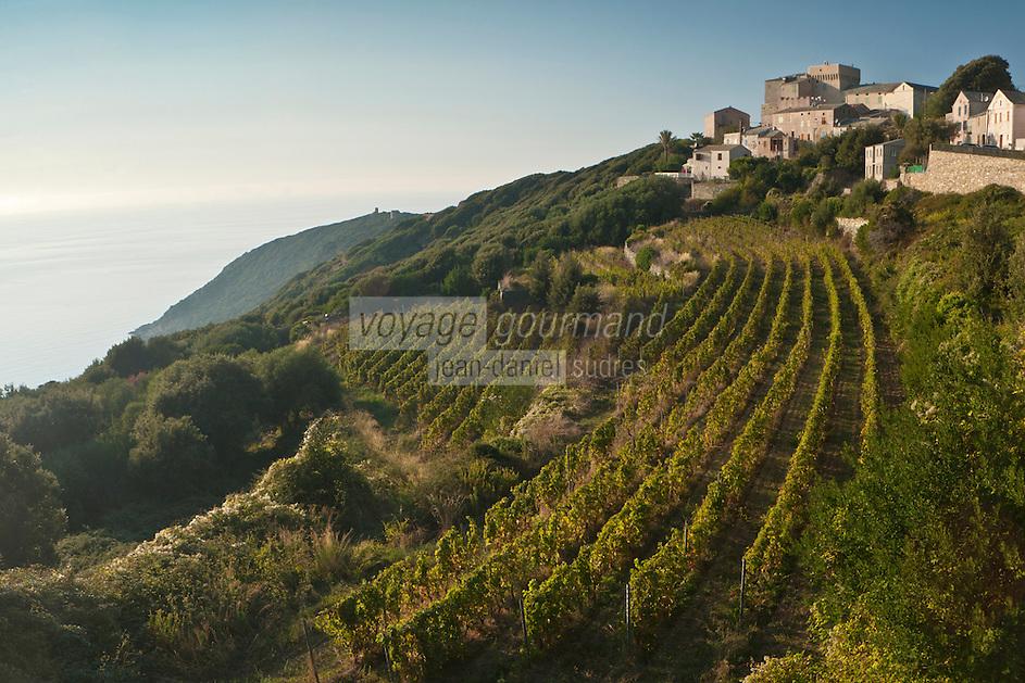 Europe/France/Corse/2B/Haute-Corse/Cap Corse/ Morsiglia: Vue du hameau de Stanti avec ses vignes en terrasse