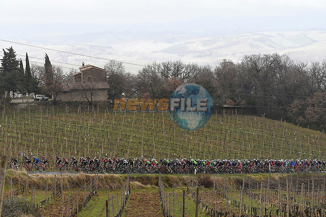 The peloton in action on the white gravel roads of Tuscany during the 2017 Strade Bianche running 175km from Siena to Siena, Tuscany, Italy 4th March 2017.<br /> Picture: La Presse/Fabio Ferrari | Newsfile<br /> <br /> <br /> All photos usage must carry mandatory copyright credit (&copy; Newsfile | La Presse)