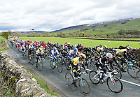 Picture by Alex Broadway/SWpix.com - 29/04/2016 - Cycling - 2016 Tour de Yorkshire, Stage 1: Beverley to Settle - Yorkshire, England - The peloton makes it way through the Yorkshire countryside.