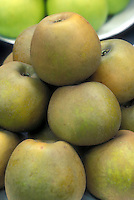 Apple 'Golden Russet' Malus domestica fruit dessert apples, heirloom apple variety, American antique apple, great for eating or cider